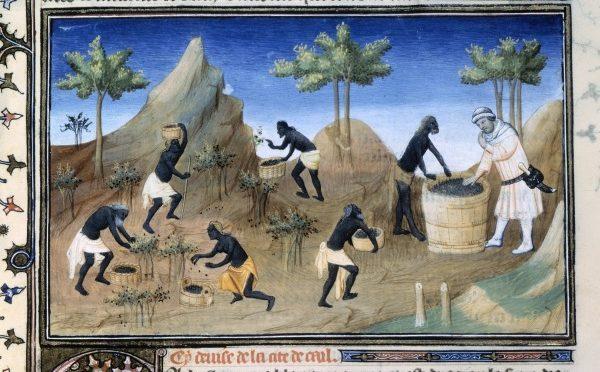 Colloque «Le poivre, de l'Antiquité à l'époque moderne : un luxe populaire ?», 23-15/11/2017, Paris
